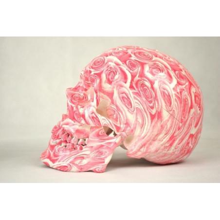 Koristepääkallo ruusukuviolla (Pinkki/Valkoinen)