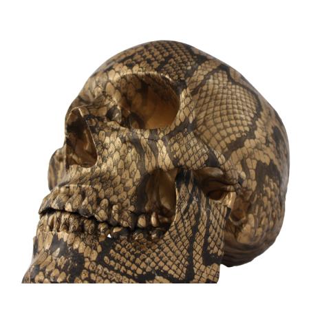 Koristepääkallo käärmekuviolla