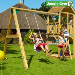 Jungle Gym Swing Module...