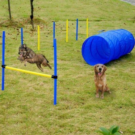 Koiran agilityrata