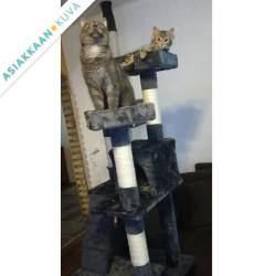2018 Kissan raapimispuu 170...