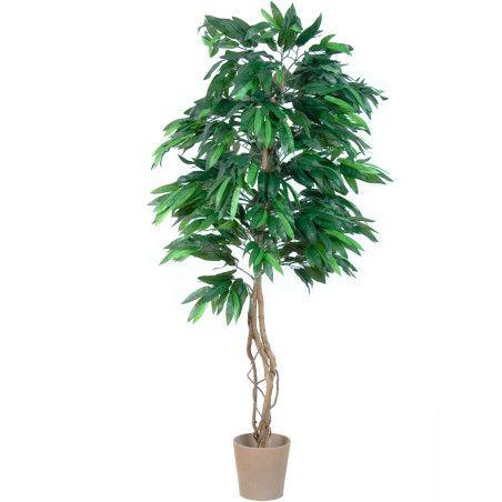 Keinotekoinen mangopuu