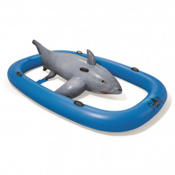 Uimalelu vuorovesihai rider