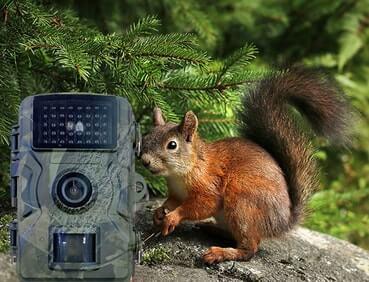 riistakamera-lähettävä-wifi-kuva